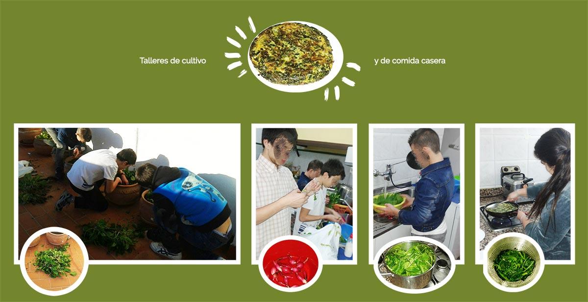 fundacion-senda-andalucia-talleres-educativos-cultivo-comida-sana