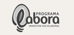 colaborador Programa Labora