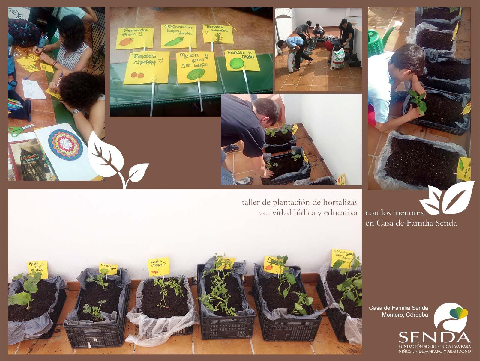 talleres educativos hortalizas Casa de Familia Senda Montoro